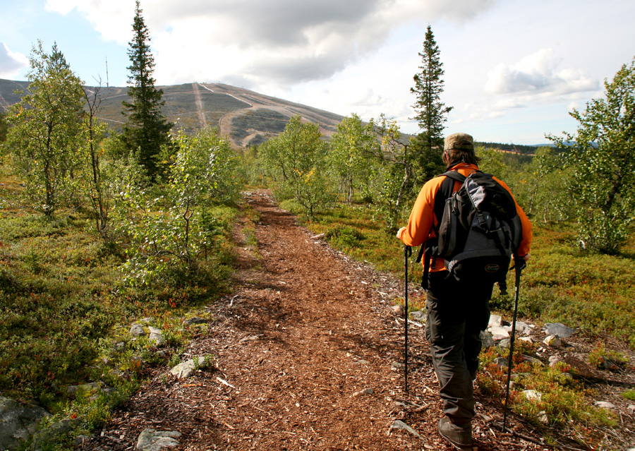 hiking-lapland